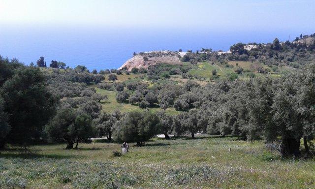 ΟΚ122 Land in Athani