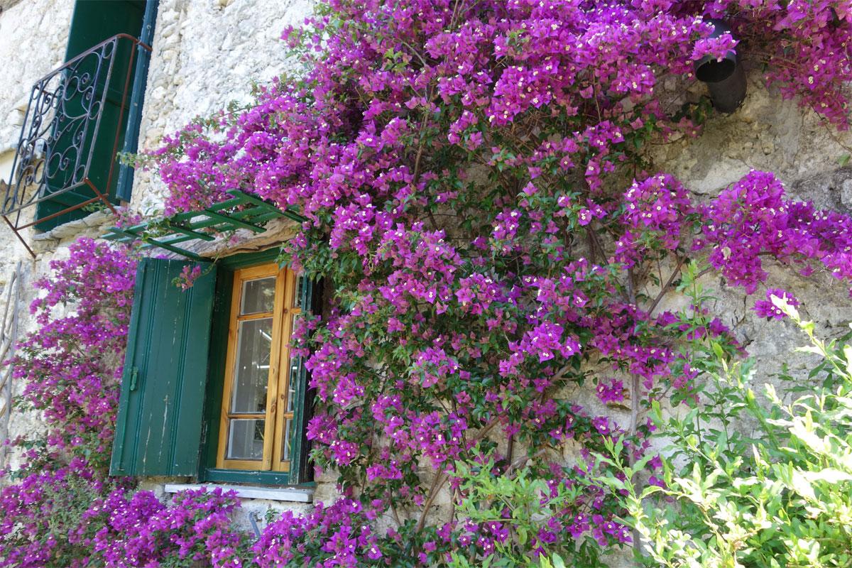 ΚΤ294 Stone house in Katouna