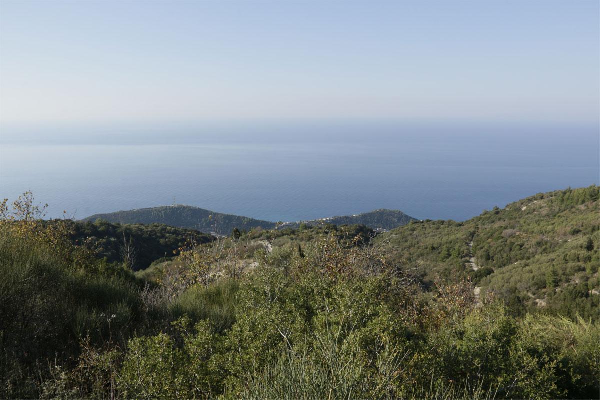 ΟΚ138 Land in Drimona